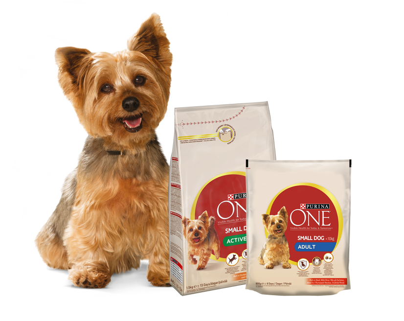 Yorkshire Terrier- och Purina ONE Small Dog-produkter