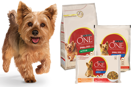 Purina ONE Small Dog Torrfoder