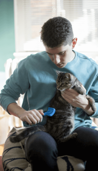 A young man holding a cat in his arms whilst grooming it.